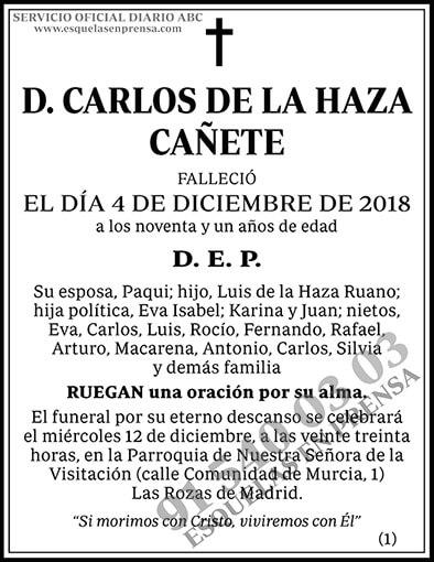 Carlos de la Haza Cañete